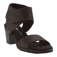 レディース サンダル Walking Cradles Nox Quarter Strap Sandal (Women's)