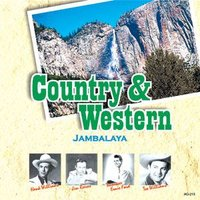 カントリー&ウエスタン、豪華アーティストによる栄光のヒット曲集。今なを輝く黄金時代の歌声をたっぷりと...