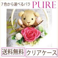 遅れてごめんね プリザーブドフラワー 母の日 プレゼント 誕生日 PURE くまさんと 選べるバラの色 送料無料 バラ 薔薇 祝電 結婚式 クリアケース