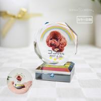 ペット 位牌 KP-27 写真 カラー スワロフスキー 仏具 ペットメモリアル 手元供養 49日 虹の橋 ガラス かわいい キラキラ 犬 猫 うさぎ インコ プチサイズ