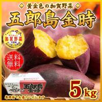 ■五郎島金時 加賀野菜 産地箱  【商品内容】  さつまいも 約5kg 野菜は生鮮品です。重さや数は...
