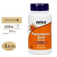 パントテン酸 サプリメント お試しサイズ パントテン酸カルシウム 100粒 NOW Foods ナウフーズ