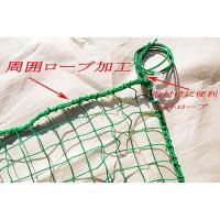 野球ネット(軟式用)3m×3m