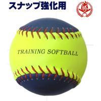 ボールを軽く上に放ってキャッチする動作を繰り返すだけで手首のスナップを強化できるボールです。  一人...
