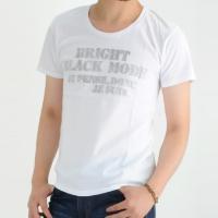 プリントtシャツ メンズ プリント tシャツ