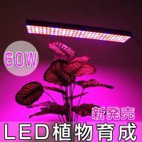 特徴   室内等の植物の育成に  太陽光が入りにくい場所で植物を育てる際に、光合成に有効な光を集中さ...