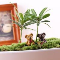 ノーブランド品 ドールハウス ミニチュア 妖精の庭 インテリア 箱庭用 マイクロ風景 盆栽 DIY 装飾 クラフト 小道具 クマ 10個