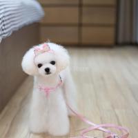 ノーブランド品  ペット 犬 牽引 ロープ リード リーシュ 首輪 ハーネス ストラップ カチューシャ 全3色2サイズ選ぶ - ピンク, M