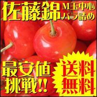 ※出荷時期によっては紅秀峰という品種になることもございます。  山形県より産地直送!!さくらんぼの王...
