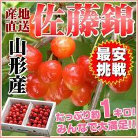 ※出荷時期によっては紅秀峰という品種になることもございます。  チャンスは2週間だけ!! 露地栽培『...