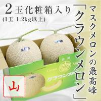【送料無料】静岡県産 クラウンメロン 山等級 2玉 化粧箱 入り (1玉1.2kg以上) マスクメロン メロン 高級メロン 高級フルーツ 高級果物 果物 くだもの フルーツ