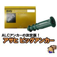 アサヒ ビッグアンカー BA-1/2B  20本入り 【旭化学工業 ALC アンカー】