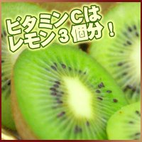 少し固めの摘みたて新鮮キーウイフルーツ! 固い場合は追熟させてください ・内容量/2kg20個前後(...