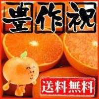 外皮ギリギリまで甘くてゼリーのように柔らかな果肉をぎゅうぎゅうに詰め込んだ究極の柑橘「せとか」 不選...