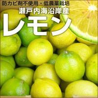 """大変希少な""""国産レモン""""瀬戸内産です 防カビ剤不使用で安心! ・内容量→1kg 10〜15個前後 ・..."""