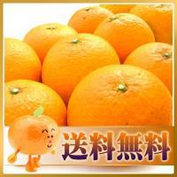 【特徴】別名清見オレンジともいい、果汁豊富で 温州みかんの濃厚な甘さとオレンジの香りが融合。多くのか...