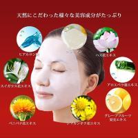 ココバイオマスク(フルフェイス ) フェイスマスク 美容液 保湿  天然成分|sunpac|02