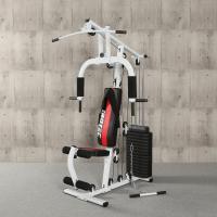 IROTEC(アイロテック)マルチホームジム150-V2/ホームジム マルチジム トレーニング器具 ベンチプレス トレーニングマシン 筋トレ器具 腹筋マシン