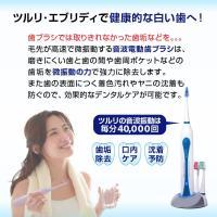 電動歯ブラシ 歯ブラシ 電動 音波 充電式 本体 音波 替えブラシ3本 ブラシ 高性能  口臭 虫歯 充電|supereagle|05