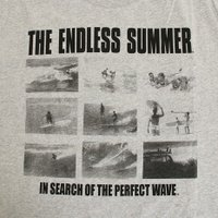 The Endless Summer 半袖 ピクチャー Tシャツ TESM006 GRY (Men's)