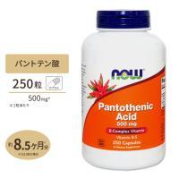パントテン酸カルシウム 250粒 NOW Foods ナウフーズ