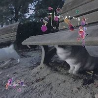 Thanatory 鞠絵 発売日:2017年6月9日 種別:CD  こちらの商品につきましては、メー...