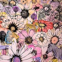 ▼CD/マルーン5/ジョーディ-デラックス・エディション (限定盤)