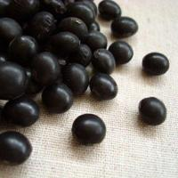 いわいくろは「光黒」銘柄に属している大粒の黒豆です。奨励品種に認定されたのは1998年ですが、今では...
