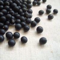 黒千石は、北海道で昔から栽培されてきた小粒の黒豆です。一時は緑肥※大豆などとして優良品種にも指定され...
