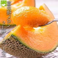 産地 北海道富良野産 名称 メロン サイズ 2Lサイズ(1玉1.5kg以上) 配送時期 7月上旬から...