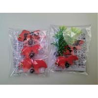 金魚 金魚3匹セット+水草セット(金魚小2匹・水草)が送料無料で1,080円(代引き不可)|syozan|02