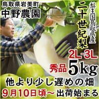 鳥取県産 農家指定商品「二十世紀梨」
