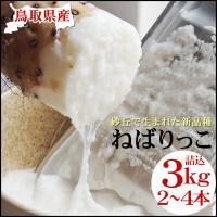(予約販売)ねばりが強く肉質が緻密な特大サイズの長いも!