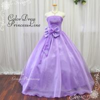 カラードレス ウエディングドレス ロングドレス 演奏会 二次会 プリンセスライン ウェディングドレス...