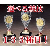 競技にあわせてメダルが選べるトロフィーです。メダルの種類が豊富さが自慢です! ◆サイズ:高さ185m...