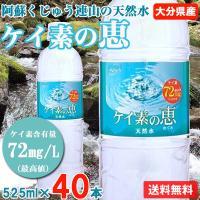 ケイ素水 シリカ水 500ml 48本 高濃度ケイ素水 大分県産 ミネラルウォーター 天然水 ケイ素...
