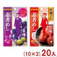 (2つ選んでクリックポスト全国送料無料) 味覚糖 旨味シゲキックス 忍者めし (10×2)20入
