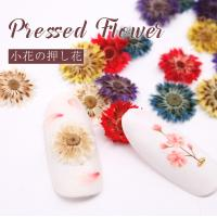 ITEM DETAIL 商品名 押し花 ドライフラワー 小花6色セット 数量  4枚×6色 24枚入...