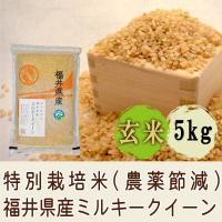 ■ゆめぴりかと同じ低アミロース米 ミルキークイーンはもち米に似たお米でコシヒカリよりもさらにもちもち...