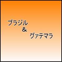 グァテマラ SHB  品種 カツーラ種、カツアイ種 洗浄方法 ウォッシュド式 乾燥方法 天日乾燥 グ...