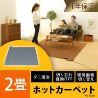 足元から暖める床生活のスタンダード! ダニ退治機能付き&折り畳み収納ができます。 ●商品サイズ(cm...