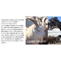 カシミア 100% ストール 高品質 GOBI(ゴビ)社 大判ストール アート 花柄 スカーフ マフラー po054(t703)