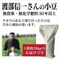 北海道産 無農薬小豆「渡部信一さんの小豆30kg(30kg×1袋)」 無農薬・無化学肥料栽培30年の美味しい小豆 渡部信一さんは化学薬品とは無縁の生産者