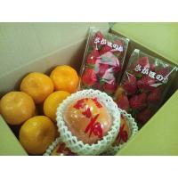 ●名称  九州産 新鮮果物 3品目詰合せセット  ●産地名  九州各県産  ●内容量  旬の果物3品...
