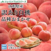 白桃 桃 訳あり 品種おまかせ 約2kg (玉数おまかせ) 山形県産 もも ご自宅用 f15