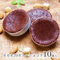 送料無料 1000円ポッキリ ポイント消化 訳あり チョコ チョコレート スイーツ お菓子 ケーキ カカオ70ガトーショコラ10個入