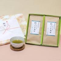 静岡茶深蒸し煎茶ふじかぜ贈答用2本セット慶事用ギフト 日本茶 緑茶 お茶
