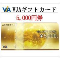 VJA(VISA)5000円券三井住友カード(ギフト券・商品券・金券・ポイント消化)(3万円でさらに送料割引)