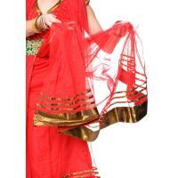 パンジャビ・ドレス3点セット 青 / インド パンジャビドレス レビューでタイカレープレゼント