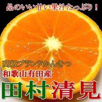 """「太陽が3つある」と表現されるほどに、""""かんきつ""""の栽培に適した環境の場所、""""田村""""は日本有数の美味..."""